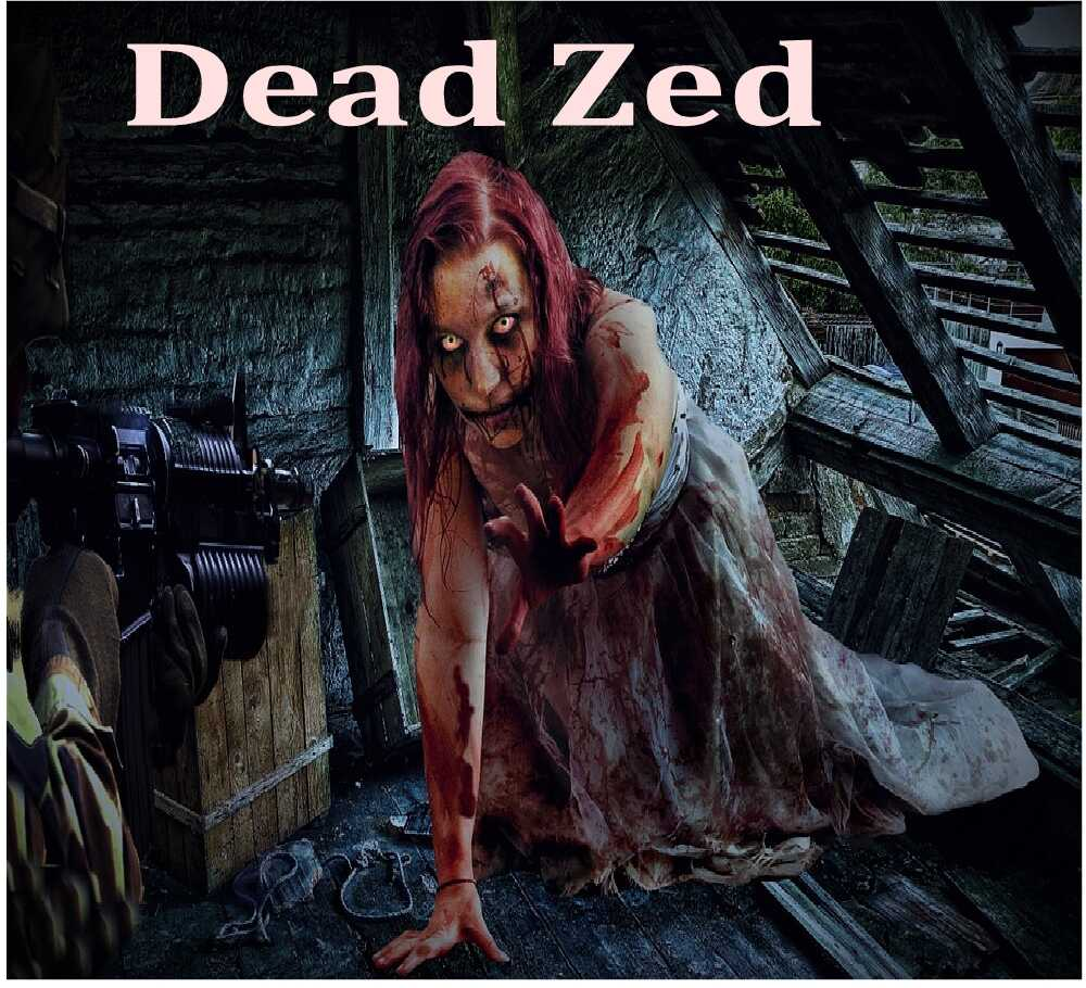 Amazing popular Flash Game Series - Dead Zed 3