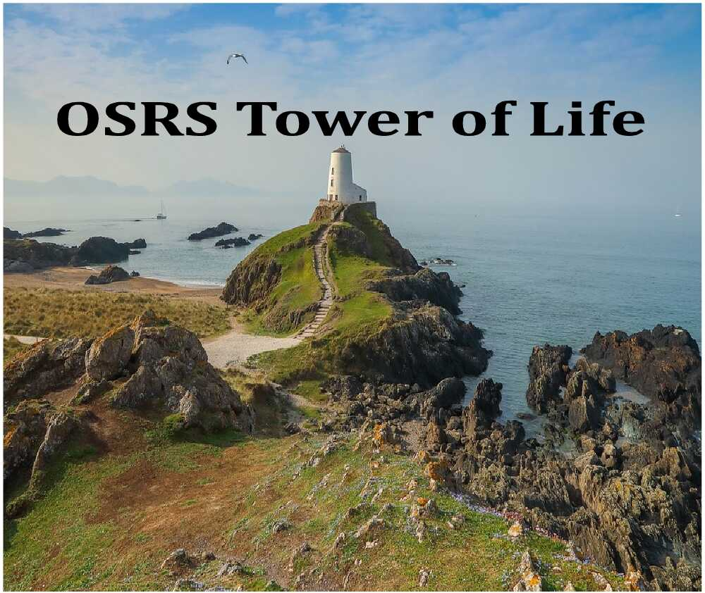 osrs tower of life