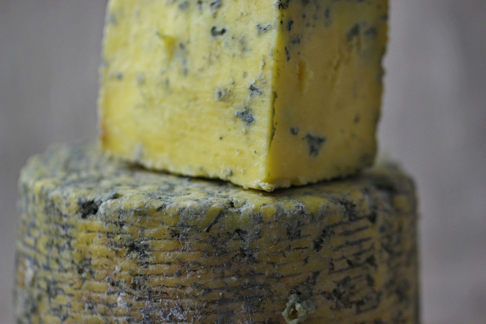Is Blue Cheese Moldy
