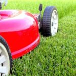 Top 10 Lawn Care Tips