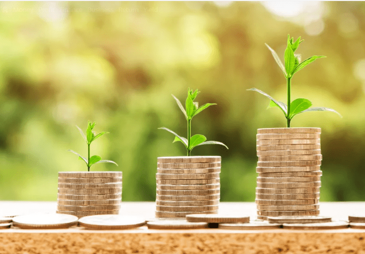 How to Increase Profit of Small Business in 2021