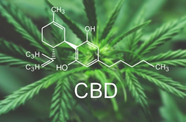 CBD Stay In Your System