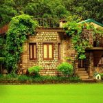 Find the best resorts in jim Corbett and the time of your life here!