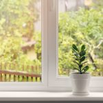 Common Myth About Home Windows