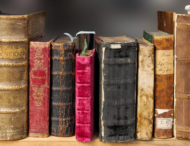 A Basic Guide on What to Do With Old Books?