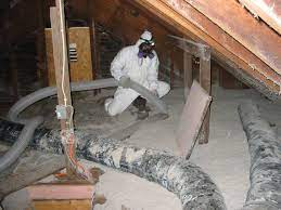 Top Reasons You Should Consider Insulation Extraction Services
